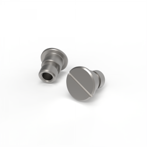 A stainless steel screw